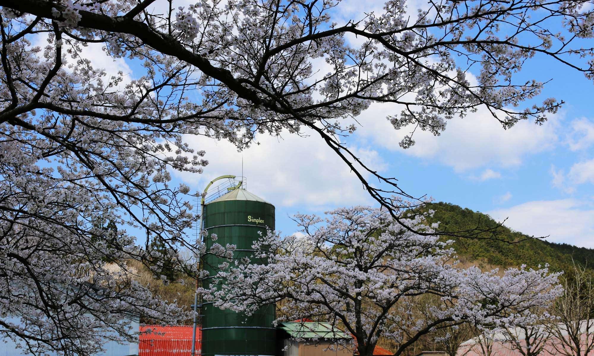 京都大学大学院農学研究科附属牧場
